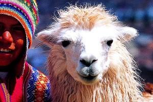 Alluring Peru