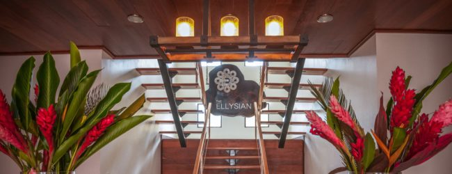 The Ellysian Belize